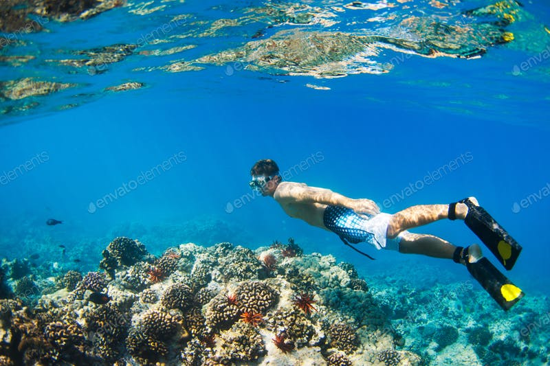 Snorkeling Adventure: Things To Take On Your Next Visit