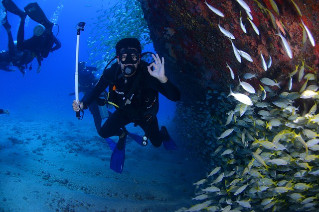 Debunking Myths Regarding Scuba Diving